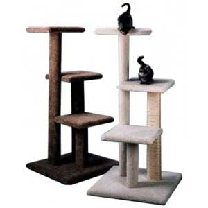 un arbre chat pour mon exotic shorthair. Black Bedroom Furniture Sets. Home Design Ideas