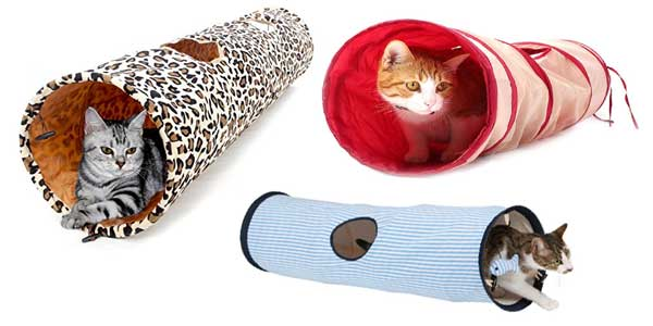 Tunnel pour chat : un tube